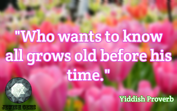 Golden Years Quotes 53