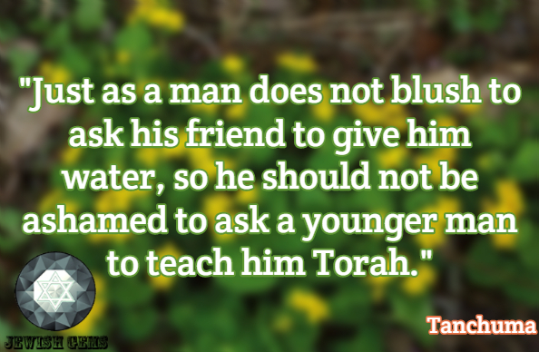 Torah/Bible/Tanach Quotes 61