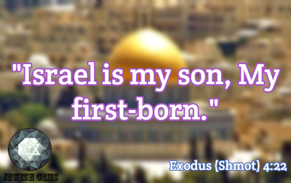 Israel Quotes 113